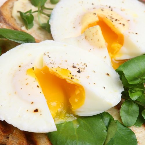 Eat Eggs And Lose Weight