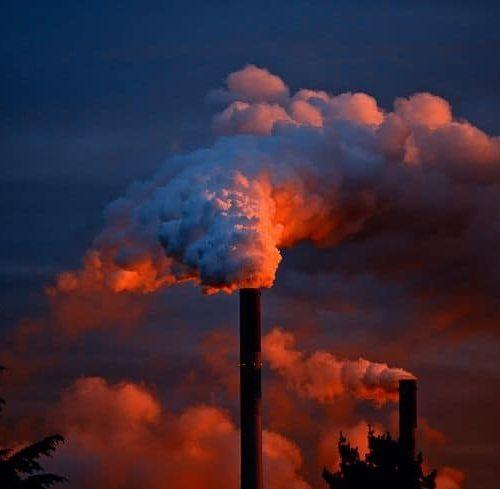 How Do Pollutants Reach Humans?